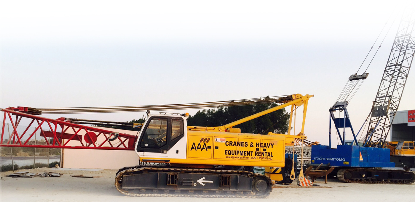 mobile cranes rental services